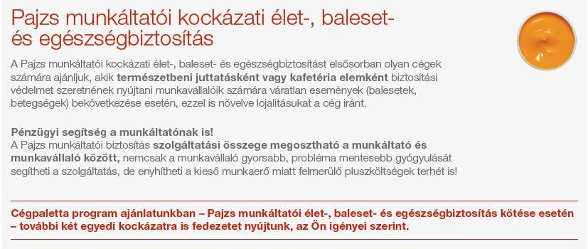 Cégpaletta Pajzs munkáltatói egészség-és balestbizt. 5